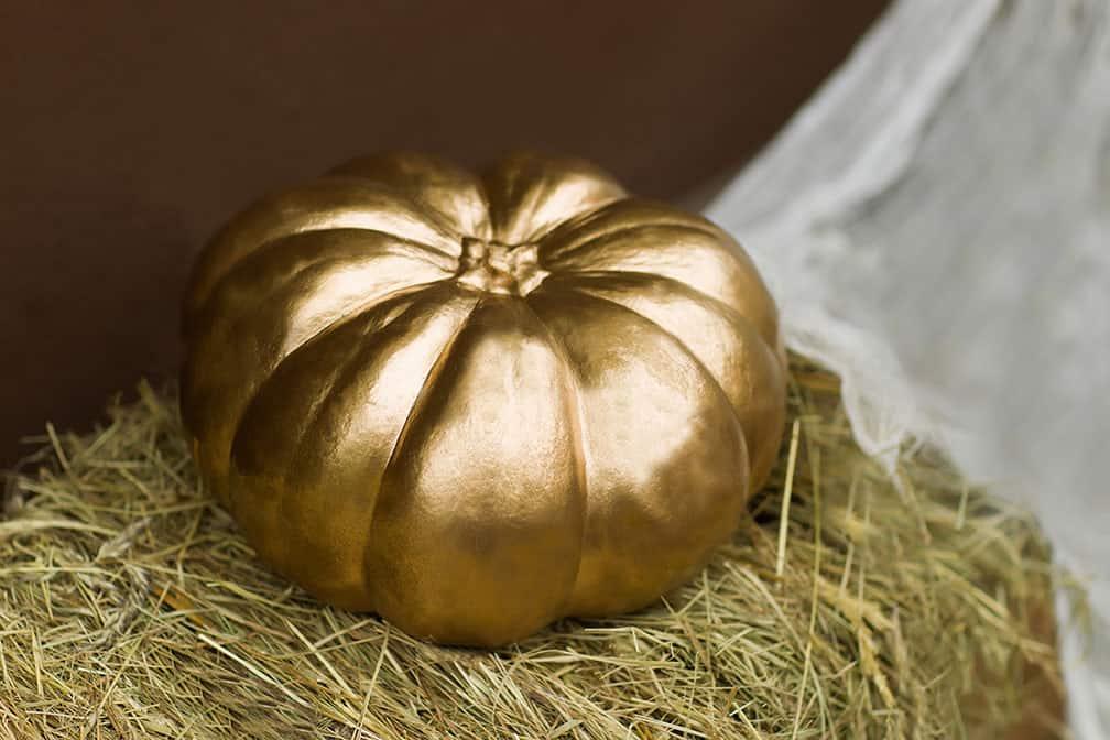 NEW for 2021 – Find the Golden Pumpkin!